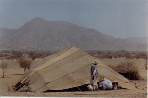 Beja howdich (dwelling), Kassala-Hameshkoreb area, Eastern Sudan, 2001. Credit: Michael Medley.